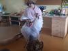 Teta jesen na obisku v vrtcu na Tišini